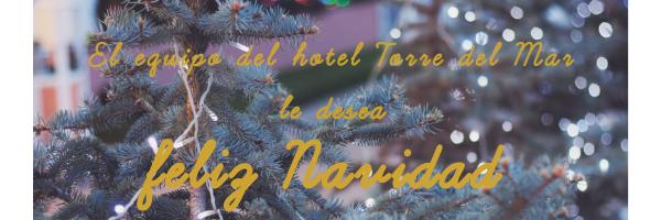 El equipo del hotel Torre del Mar le desea feliz Navidad