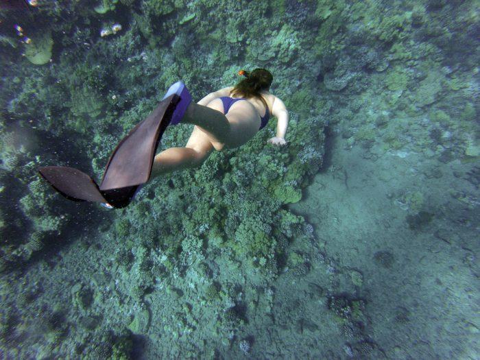 Deportes acuáticos Ibiza: snorkel y buceo